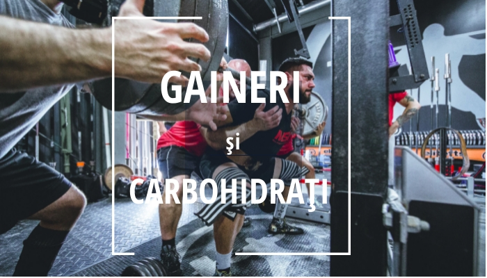 gaineri si carbohidrati